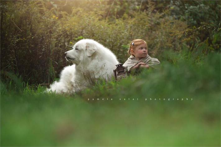 Great Pyrenees. story telling, girl and dog, warm light , posing , red head